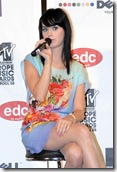 MTV Europe Music Awards 2008 Press Conference (USA and OZ only)