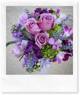 purple-and-green-wildflower-2