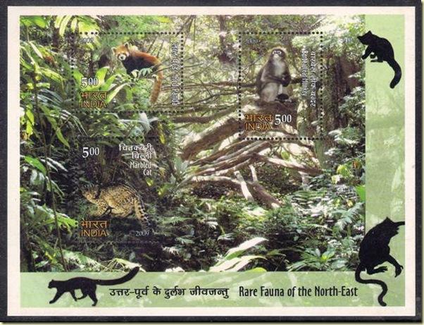 Rare Fauna