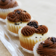 Moist Vanilla Cupcakes with Easy Chocolate Buttercream Frosting