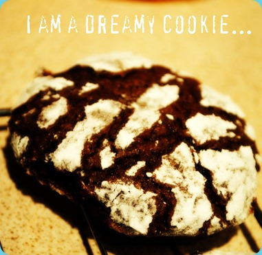 dreamy cookie
