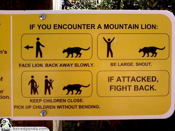 Funny-Signs-Lion-18.jpg