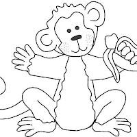 Macacos PB (3).jpg