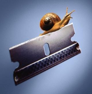 snail razor