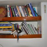 Paloma's Bookshelf