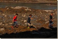 boys in rocks at low tide