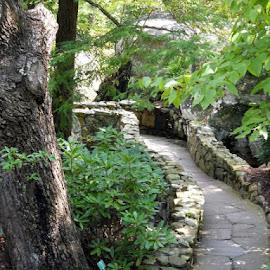 Stone Trail, Rock City by Tammy Hoge - Nature Up Close Rock & Stone