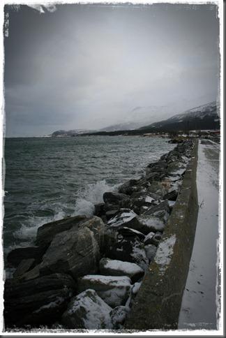 2011.02.05 084-01