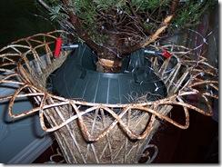 Xmas Tree 2009 013
