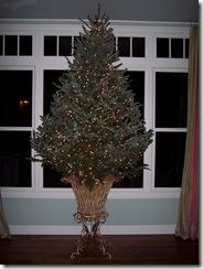 Xmas Tree 2009 018