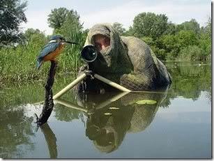 burung, gwe temenya kudanil. jangan bergerak ya..