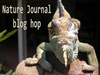 Nature J Blog hop