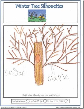 Tree Silhouette1