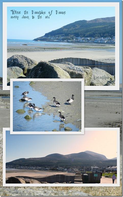 Newcastle beach Co Down Northern Ireland