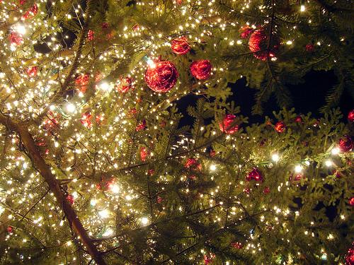 2010 聖誕快樂!! Merry Christmas