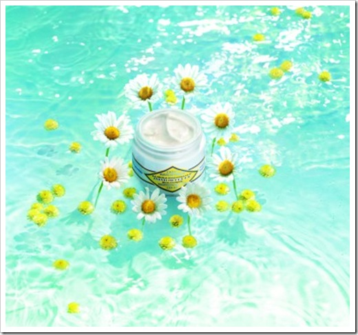 Immortelle_Brightening_Moisture_Cream-e1269284007704