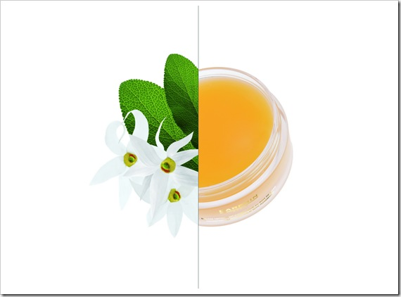 AROMATIC_CLEANSING_BALM_COMPO
