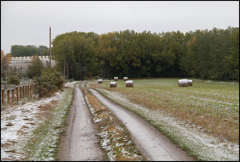 Winter- Now what happened to Fall-1