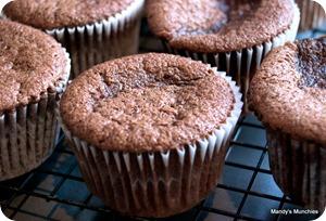Hummingbird Choc Cupcakes