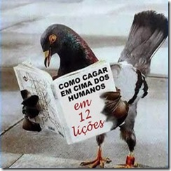 pombo_portugues