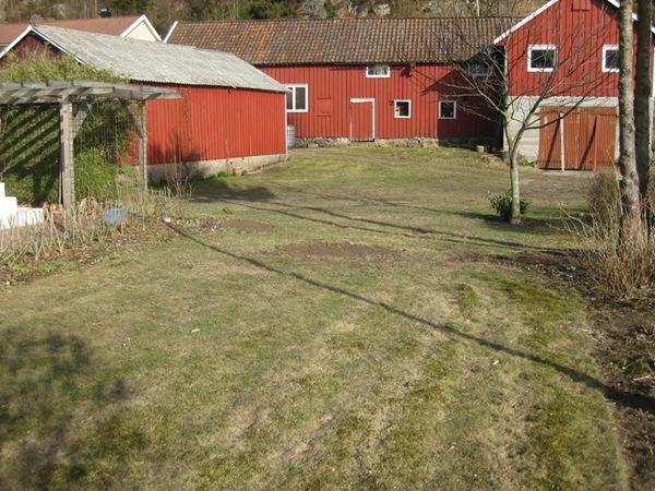 2011-04-08 Hagen (1)