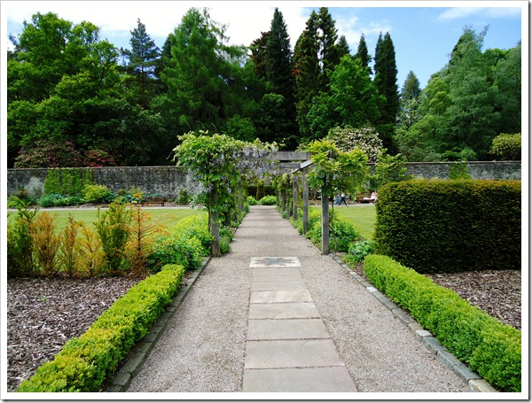 Hidden Garden at Balloch park
