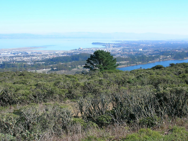 San Mateo Bridge, San Andreas Lake, and South Bay