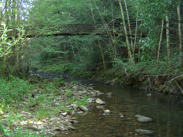Bridge across Waddell Creek