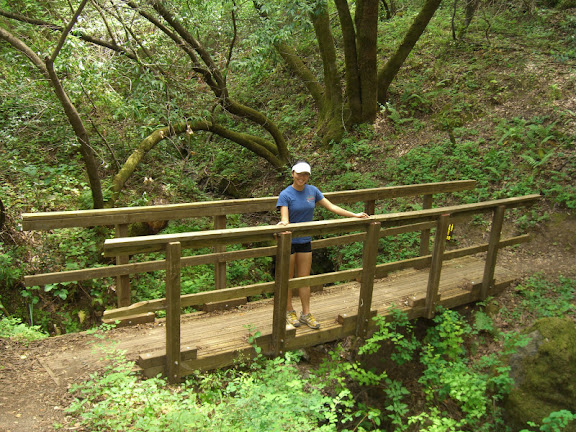 One of the many bridges on the trail