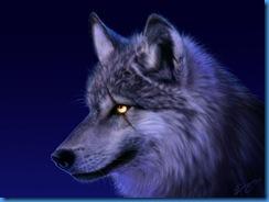 Injured_Wolf