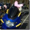 Easter Egg Run 2009 - Album 3