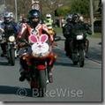 Easter Egg Run 2009 - Album 4