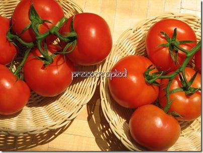 tomatoes Pree