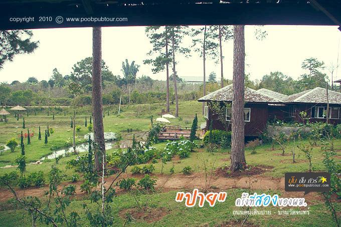 IMGP7525-s.jpg