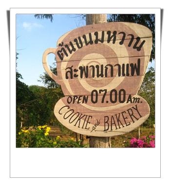 ต้นขนมหวาน สะพานกาแฟ