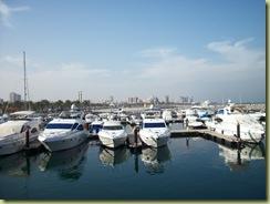 Marina at Fahaheel