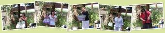 View garden party 2