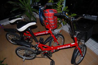 骑着自行车去秋游