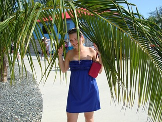 palm tree, labadee, haiti