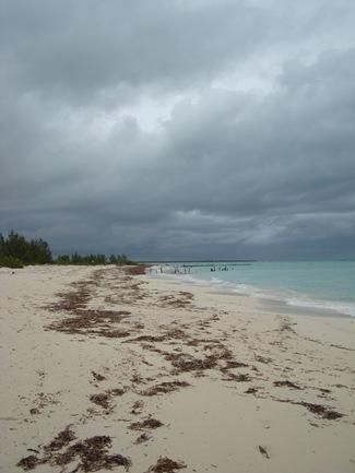 passion island, cozumel