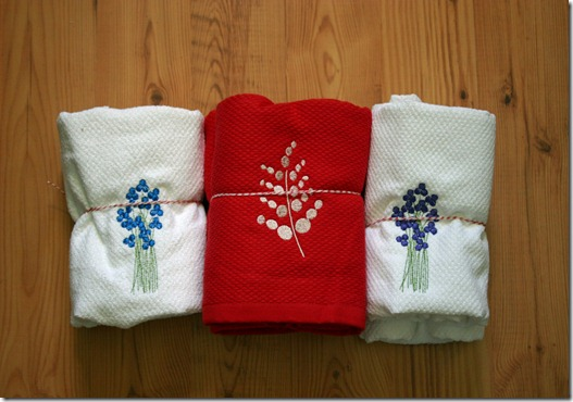dishtowels1