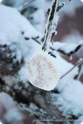 vinter hemma 2010 044
