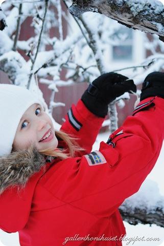 vinter hemma 2010 050