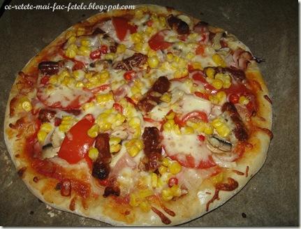 Articole culinare : Pizza Mexicană