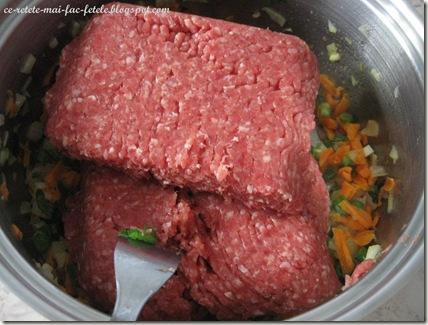 Lasagne alla bolognese - calim carnea
