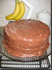 Earthquake cake variation