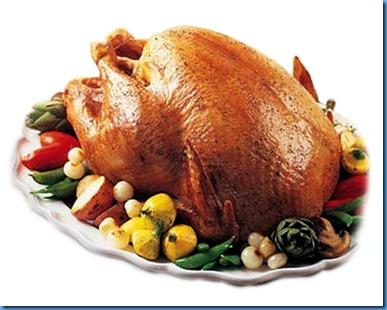 765e_turkey1