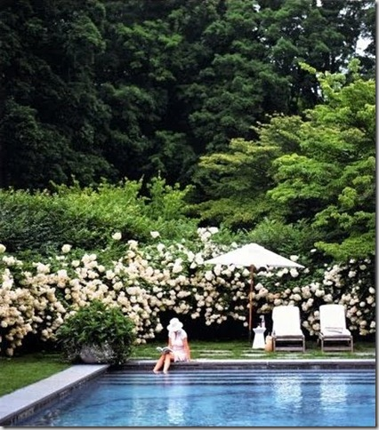 The Perfect Pool - Martha Stewart Living[1]