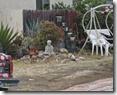 Buddha in Yard