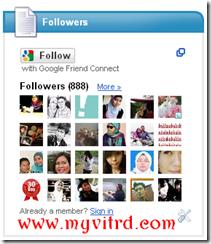 follower-888